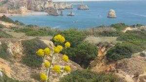 Algarve - perfect Portugal
