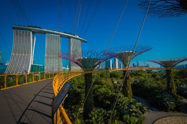 skywalk gardens by the bay singapore