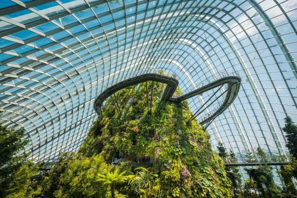 Cloud Forest - Gardens of the bay singapore