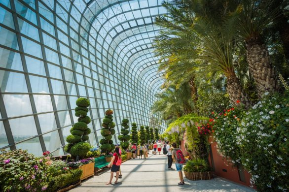 Flower Dome Gardens by the Bay singapore