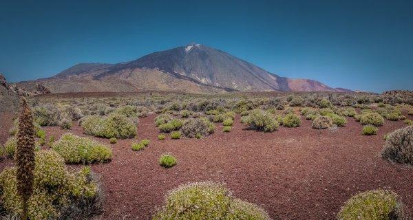Small Mount Teide Tenerife