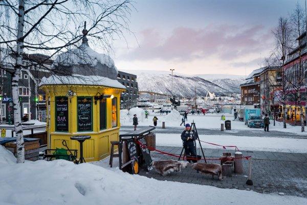 View over the bay - Rocket Kiosk Tromso