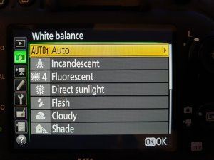 How to Take Photos in Snow - White balance