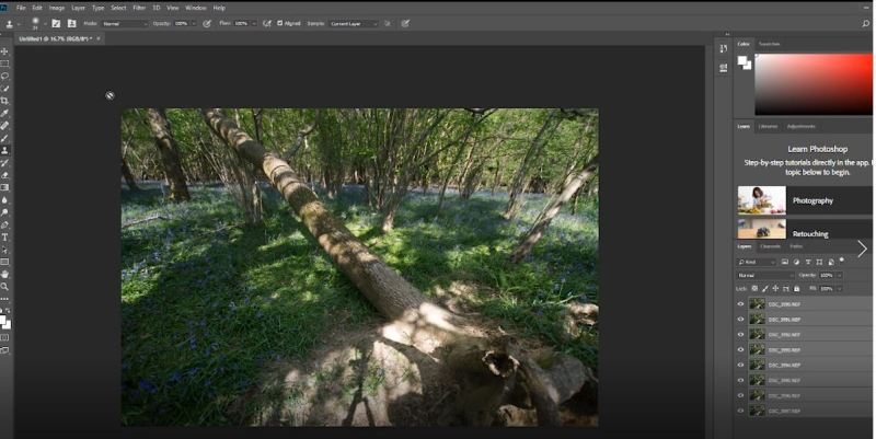 import as layers - Focus Stacking in Photoshop CC