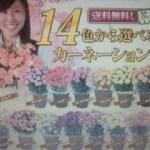2012/04/20 14:33