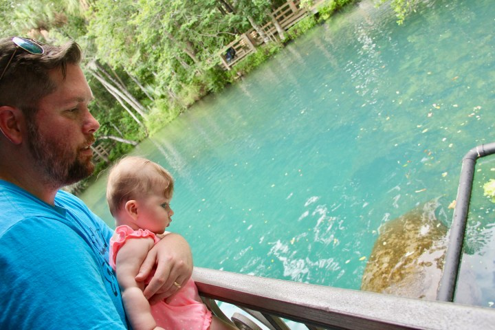 Baby and dad looking in the water at Homosassa Springs