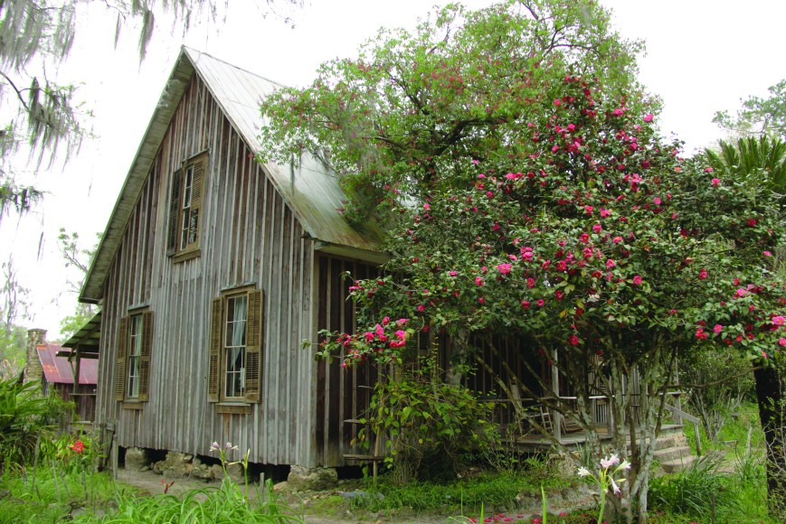 wooden farm house with blooming tree and flowers