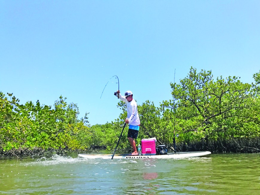 man standing on paddle board fishing in shallow backwater creek