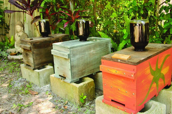 Ormond Bee Company