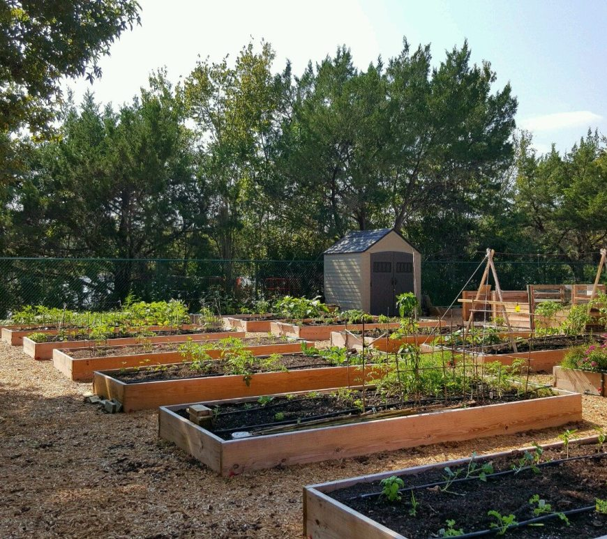 Ormond Beach community garden