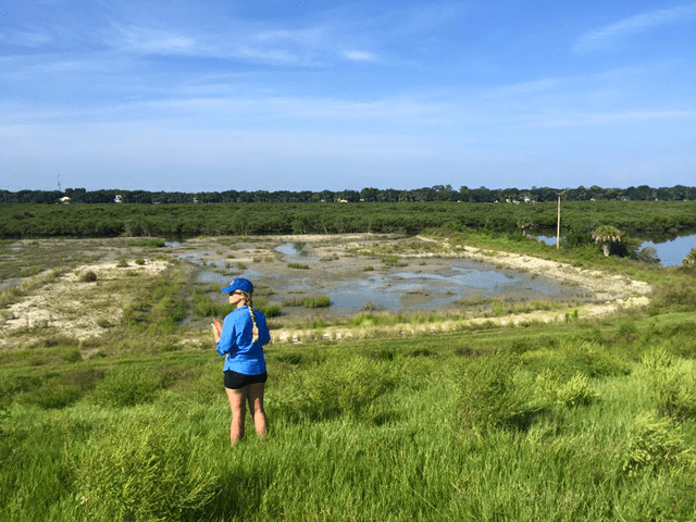 Conservation Science Coordinator Jessy Wayles overlooks the marsh in 2015 during Marsh Madness
