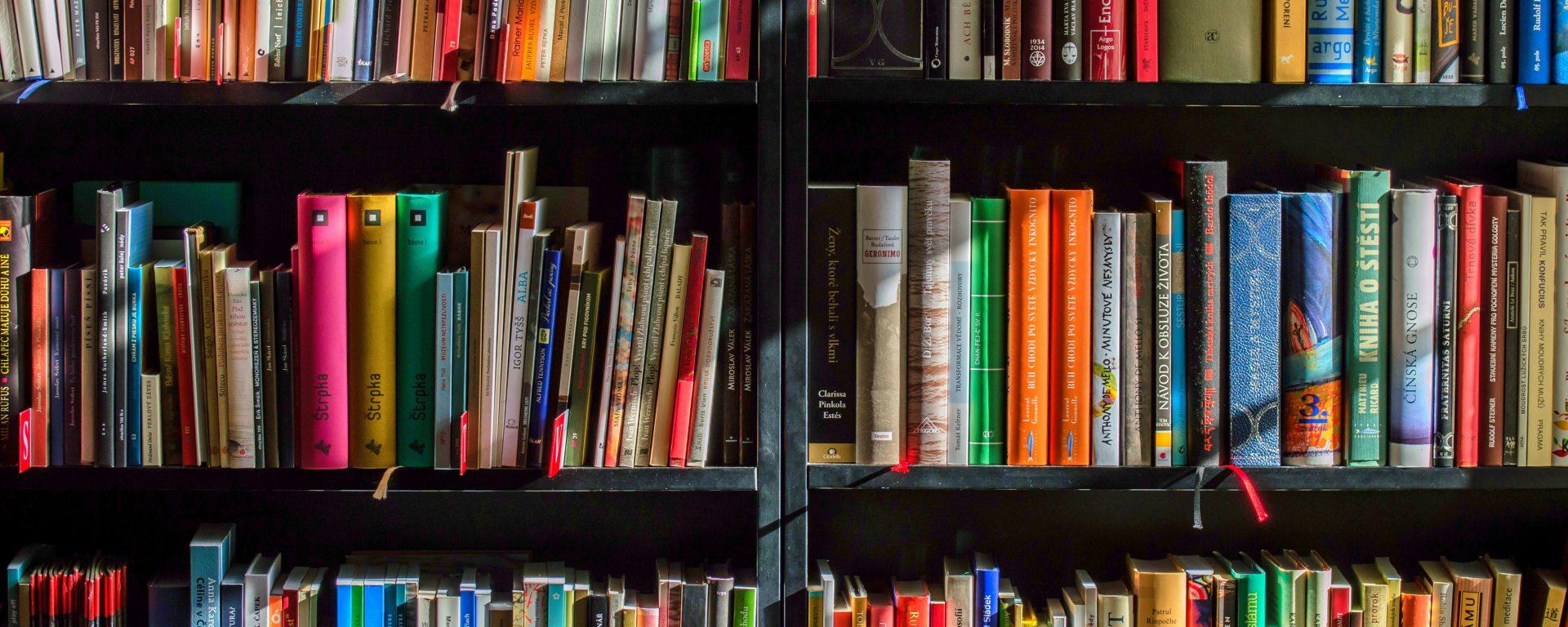 library shelves full of colorful books