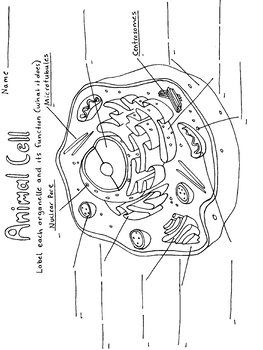 animal cell coloring page # 9