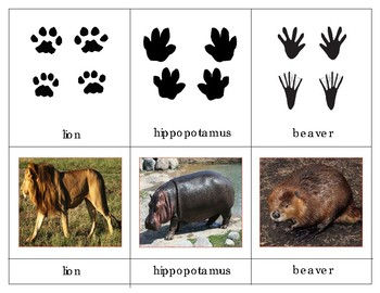 Animal Tracks Three Part Cards And Mini Matching Cards TpT