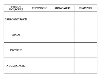 Biomolecules Card Sort Handout Fill In Diagram Quiz By