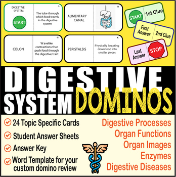 Digestive System ~DOMINO REVIEW~ 24 Cards + Answer Sheets ...