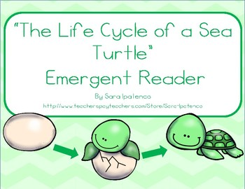 Life Cycle Of A Sea Turtle Worksheets Teaching Resources Tpt