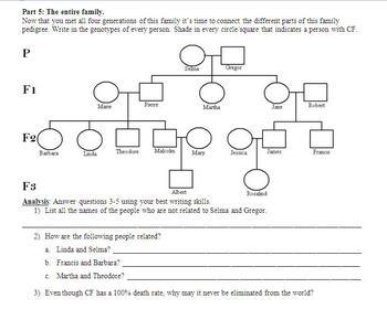 Genetic Pedigree Powerpoint And Cystic Fibrosis Worksheet