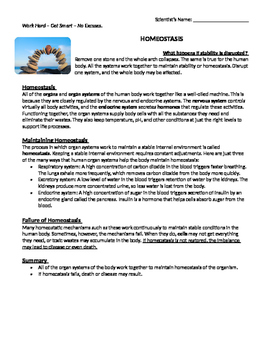 Homeostasis Reading Comprehension By Bringing Science To