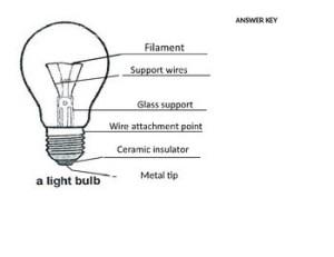 Lightbulb Diagram by Kasia Stover | Teachers Pay Teachers