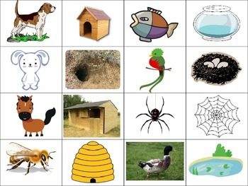 Match The Animals To Their Homes By Zobo S Teachers Pay Teachers