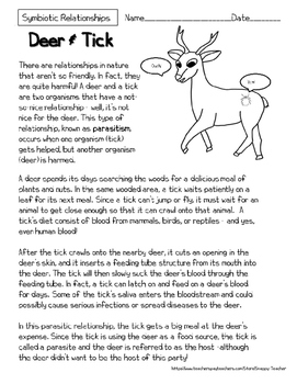 Mutualism Reading Comprehension Worksheets By Snappy