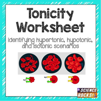 Cell Transport Osmosis Tonicity Worksheet By Science