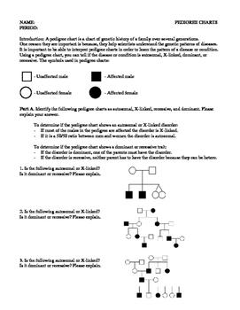 Pedigree Chart Worksheet By Code Biology