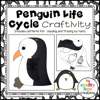 Penguin Life Cycle Craft By Crafty Bee Creations Tpt
