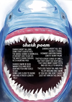 Shark Poem By Ashleigh Vilk Teachers Pay Teachers