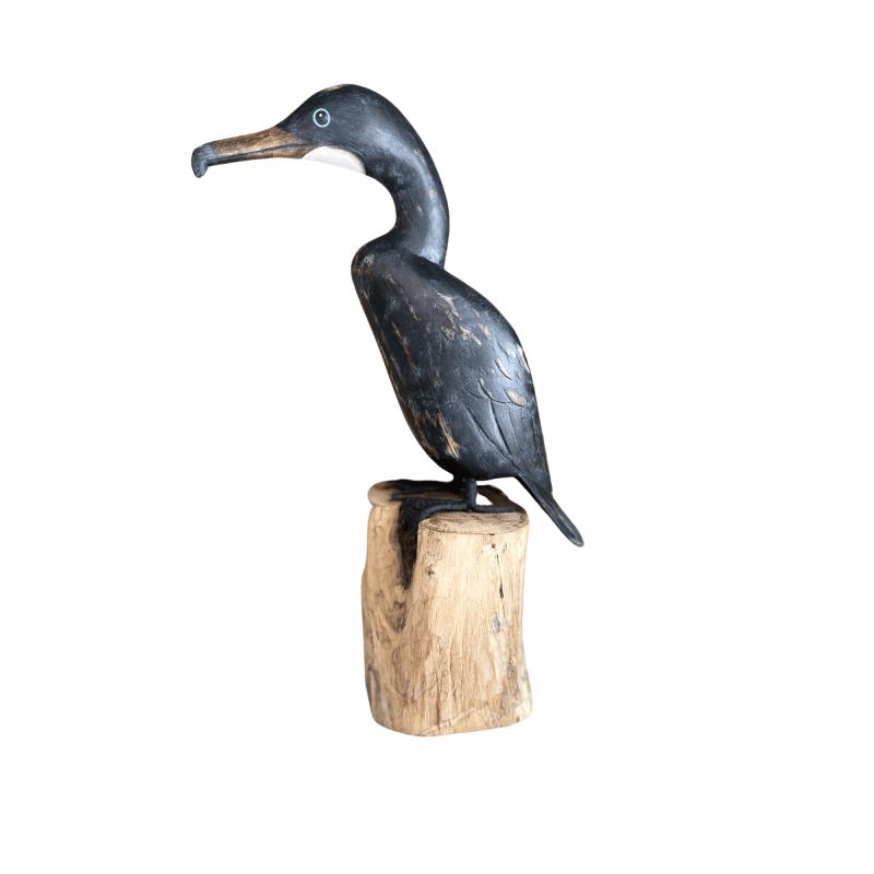 D395 Small cormorant low