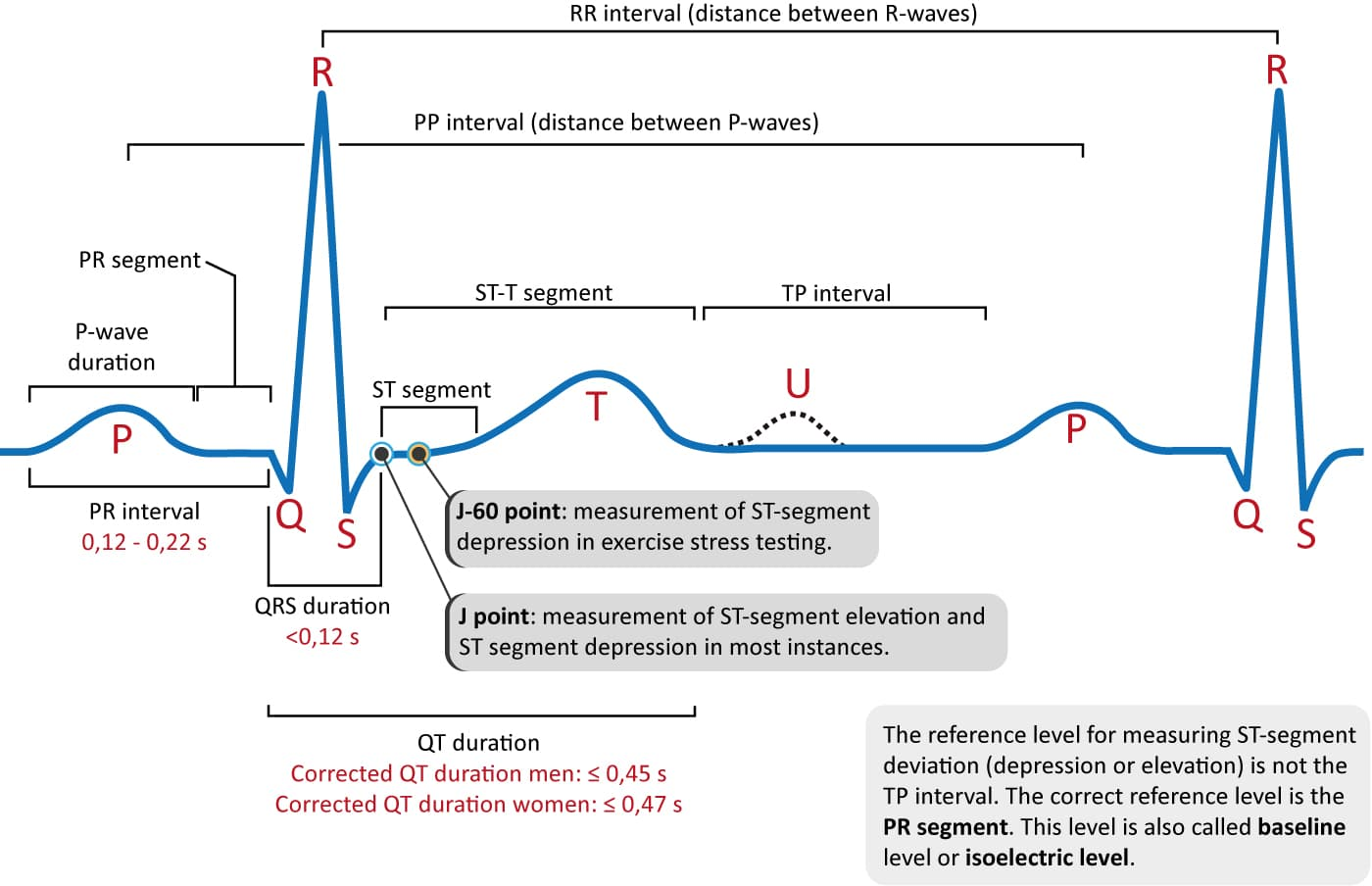 How To Interpret The Ecg Ekg A Systematic Approach Ecg Learning