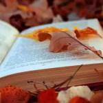 Mes lectures inspirantes sur la Féminité