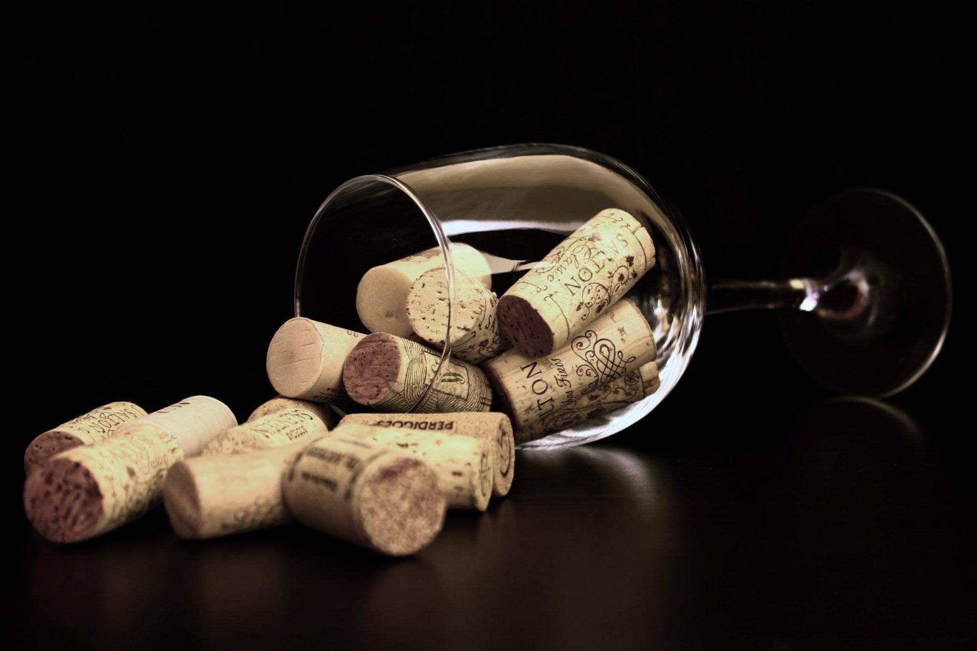 Dégustation Champagne et vins pétillants