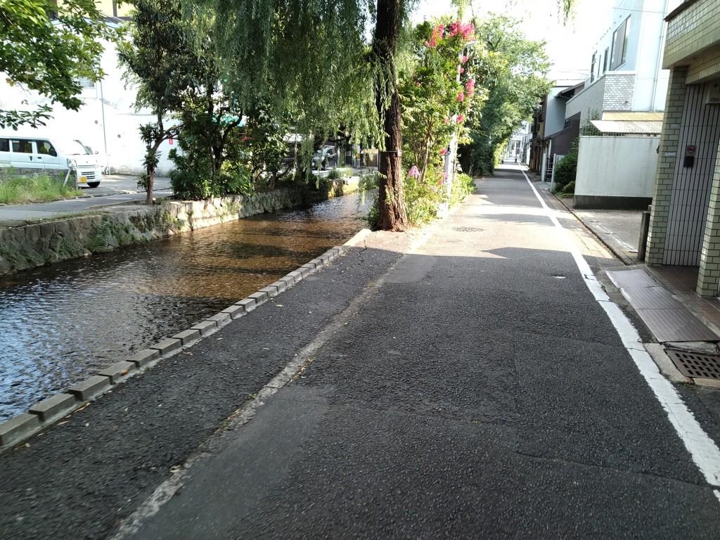 高瀬川と道路