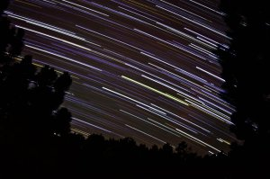 Star trails photo by Kira Roberts.