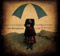 Carl Weingarten - Life Under Stars