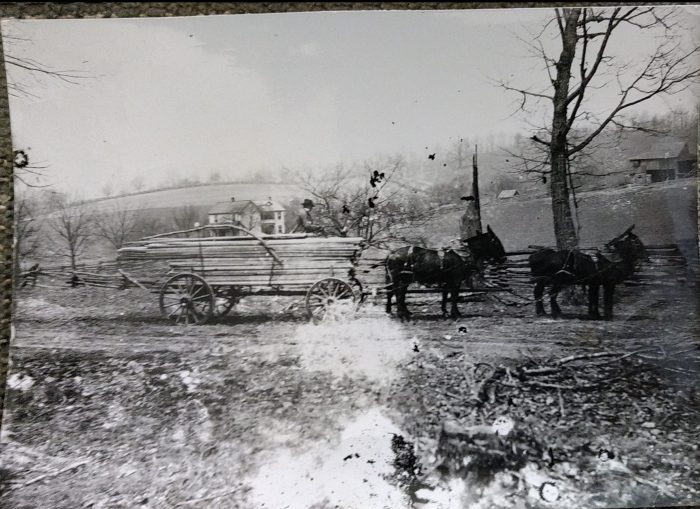 Horse and Wagon in front of William and Luemmas house. Leo Garman in wagon.
