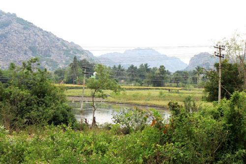 at the foot of ArunachalaIMG_6401 2