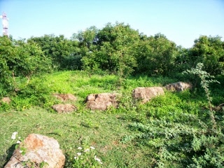 Bhushavali Travelogue Thiruporur Megalithic (2)