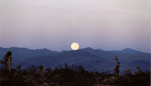 The moon in the western sky, California.