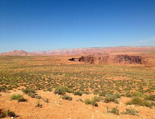 editedSag 5 desert