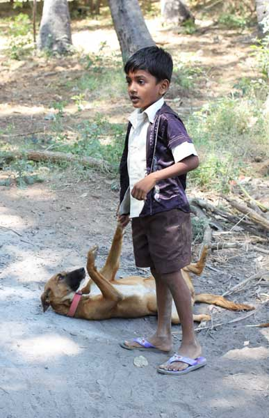 boy and dogIMG_7359 2