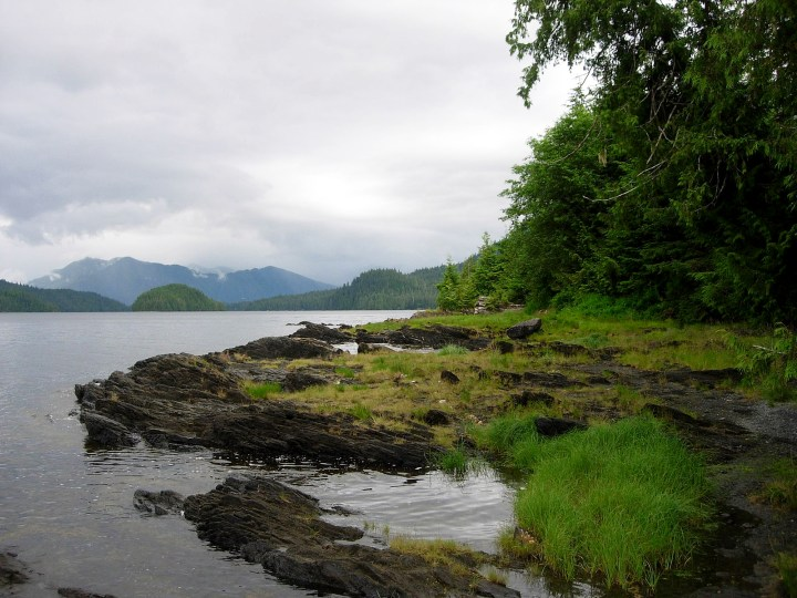 One 1600px-Tongass_National_Forest_4