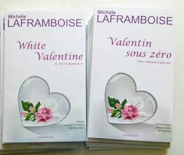 Juste à temps pour la Saint-Valentin, Valentin sous zéro, une courte romance bourrée d'humour par Michèle Laframboise chez Echofictions!