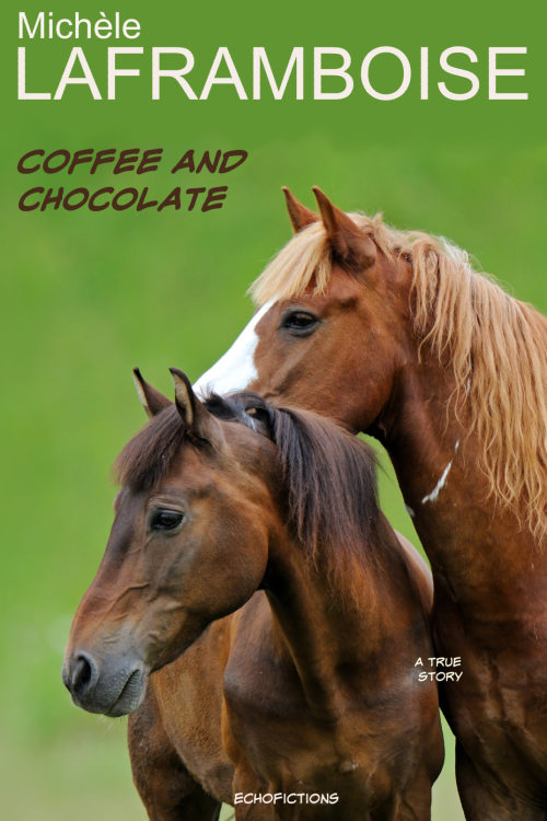 Book Cover: Coffee and Chocolate
