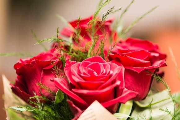 flower-3127810_1280