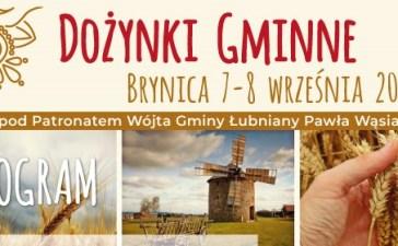 W sobotę ruszają Gminne Dożynki w Brynicy 4