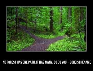 path-8