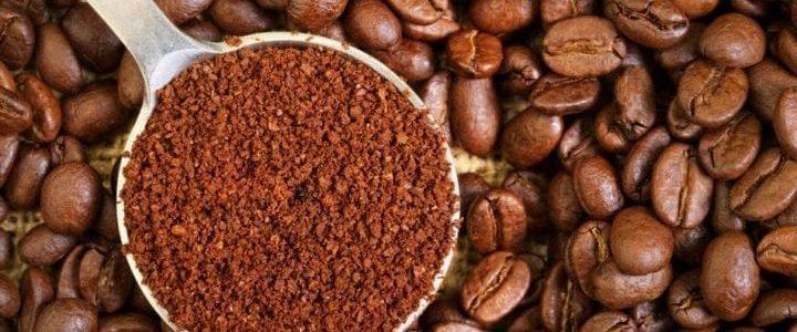 Comment choisir un café de qualité ?